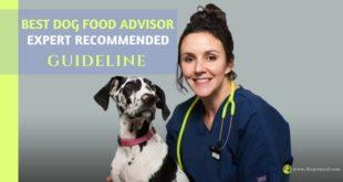 best dog food advisor