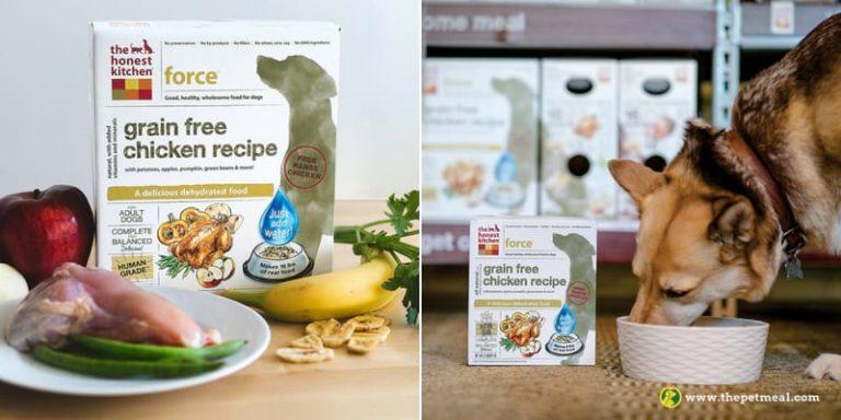 the honest kitchen grain free chicken recipe