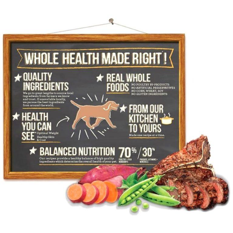 wellness core dog food nutrition