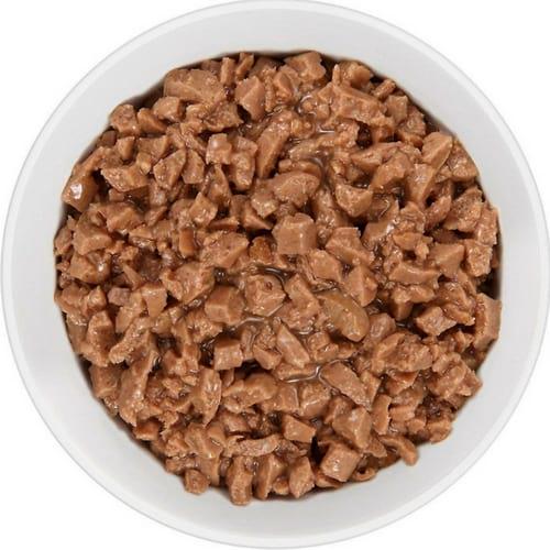 royal canin wet cat food inside